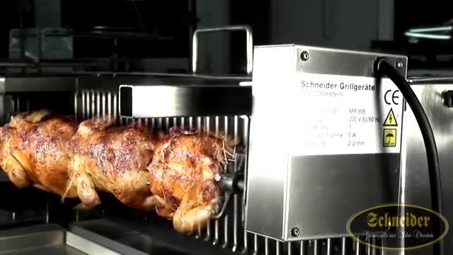 Schneider Grillmotor 230 Volt mit Gehäuse aus Edelstahl